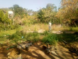 Residential Land Land for sale Wuse 1 Abuja