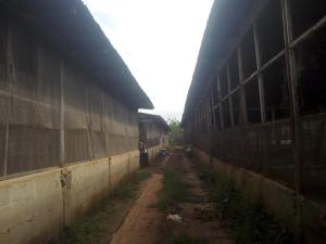 Commercial Property for sale obosima junction Imo