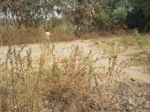Land for sale Otokiti Housing Estate  Lokoja Kogi
