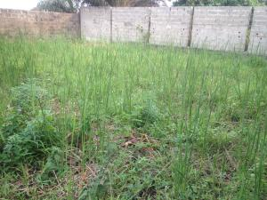 Land for sale Ilasan New Road Jakande Lekki Lagos