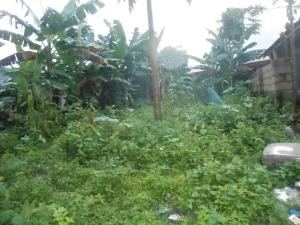 Land for rent UYO Uyo Akwa Ibom