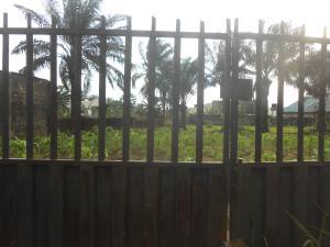 Land for sale Ibesikpo Asutan Ibesikpo Asutan Akwa Ibom
