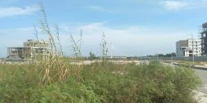 Mixed   Use Land Land for sale Shoreline estate, Close to Banana Island Old Ikoyi Ikoyi Lagos