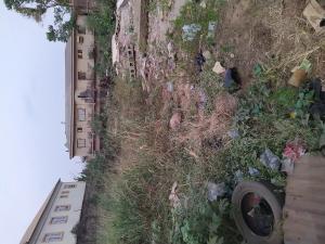 Land for sale Road Palmgroove Shomolu Lagos