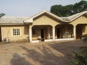 10 bedroom Blocks of Flats House for rent Emeka Ofor Road Ekwusigo Anambra