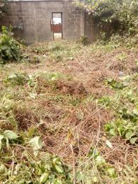 Land for sale Omojuwa  Ketu Kosofe/Ikosi Lagos - 1