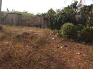 Mixed   Use Land Land for sale Goshen Estate Enugu Enugu