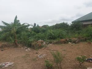 Residential Land Land for sale surulere Alagbado Abule Egba Lagos