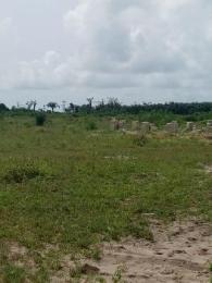 Residential Land Land for sale Westwood Estate Badore Ajah Lagos