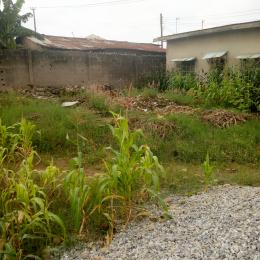 Mixed   Use Land Land for rent Egbeda Egbeda Alimosho Lagos