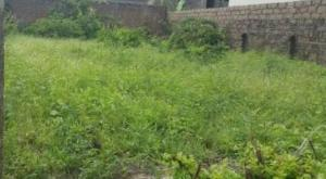 Mixed   Use Land Land for sale Adelabu Surulere Lagos