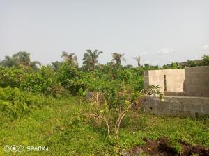 Residential Land Land for sale Igbe Ijede Ikorodu Lagos