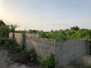 Residential Land Land for sale after santa cruz beach beside liz anjorin street Okun Ajah Ajah Lagos