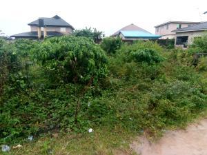 Residential Land Land for sale Adegbose Estate Ebute Ikorodu Lagos