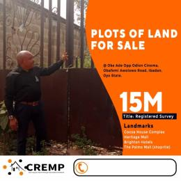 Land for sale Opposite Adiom Cinema Oke ado Ibadan Oyo