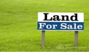 Residential Land Land for sale Along Airport  Close to Dunamis Church Lugbe Abuja