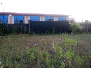 Residential Land Land for sale Philip Majekodunmi Street  Abule Egba Abule Egba Lagos