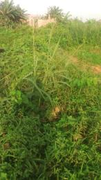 Commercial Land Land for sale Oladire str off haruna college road  Ifako-ogba Ogba Lagos