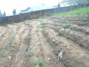 Land for sale UYO Uyo Akwa Ibom