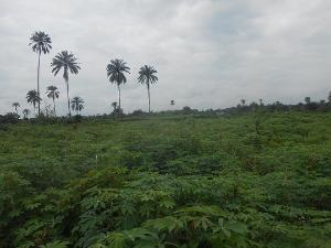 Land for sale Uyo Akwa Ibom