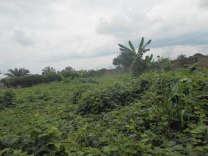 Land for sale - Uyo Akwa Ibom