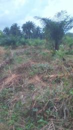 Land for sale nil Uyo Akwa Ibom