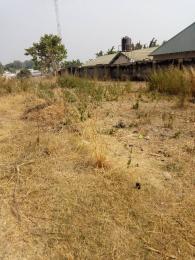 Residential Land Land for sale Asokoro Asokoro Abuja