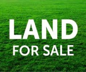 Commercial Land Land for sale Along Oba Akran Road Oba Akran Ikeja Lagos