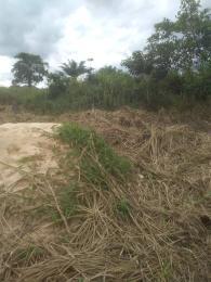 Mixed   Use Land Land for sale Idunmwungha community along Egba road Uhunmwonde Edo