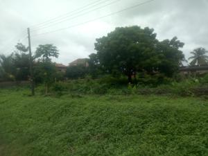Residential Land Land for sale Okigwe crescent, Agbara Estates.  Agbara Agbara-Igbesa Ogun