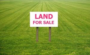 Land for sale Behind Church of God Mission Jakpa road. Uvwie Delta