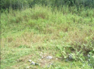 Mixed   Use Land Land for sale Central Area Abuja