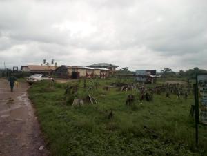 Industrial Land Land for sale Iyana church bus stop, opposite onimalu palace hotel Alakia Ibadan Oyo