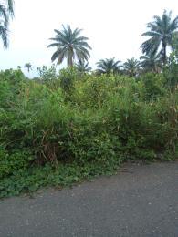 Mixed   Use Land Land for sale Umuapu Community, Ohaji Egbema LGA Owerri Imo