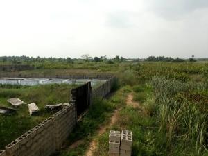 Land for sale Wagba Estate, igbogbo Igbogbo Ikorodu Lagos