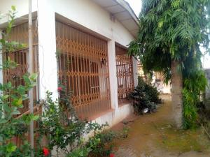 1 bedroom mini flat  Self Contain Flat / Apartment for rent Oranfe street opposite general hospital oauthc phase 2 Ife Central Osun