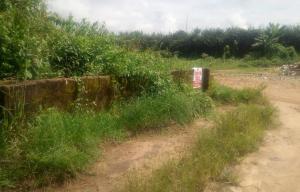 Mixed   Use Land Land for sale Use offot nwaniba road uyo Uyo Akwa Ibom