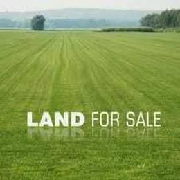 Land for sale Two and half plot of land behind emarald college eneka  Obio-Akpor Rivers - 0