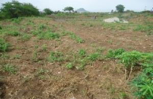 Land for sale ALONG EFAB ESTATE ROAD. Life Camp Abuja