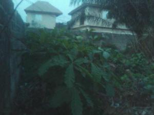 Mixed   Use Land Land for sale Remlek Estate Badore Ajah Badore Ajah Lagos - 0