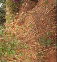 Land for sale ... Ika South Delta