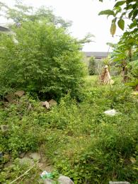 Mixed   Use Land Land for rent Close to the junction, Iba Ojo Lagos