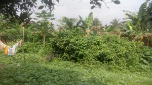 Residential Land Land for sale Maitama 2 Maitama Abuja