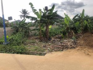 Residential Land Land for sale Beside Mercy Land ,Opposite Jephta, College  East West Road Port Harcourt Rivers