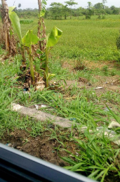 Residential Land Land for sale akenfa Yenegoa Bayelsa