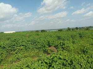 Residential Land Land for sale ASA dam, behind kwara state house of assembly.  Ilorin Kwara