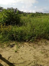 Mixed   Use Land Land for sale Monastery Road Behind Novare Mall Monastery road Sangotedo Lagos