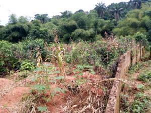 Residential Land Land for sale Ezimezi Amawbia. Awka Awka South Anambra