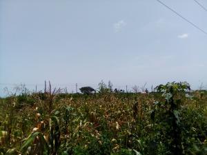 Commercial Land Land for sale Along Kakua Abuja Kaduna Expressway Kaduna South Kaduna