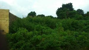 Land for sale After lifeforte secondary school  Ibadan north west Ibadan Oyo